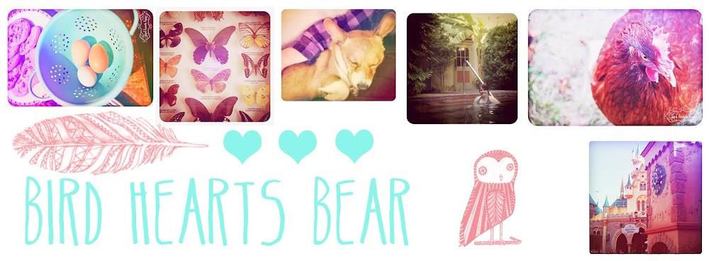 Bird hearts Bear